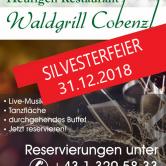 Silvesterparty mit traumhafter Aussicht auf Wien!